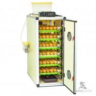 Inkubators PRODI CT180SH